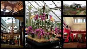Pictures from Cambridge (Botanical gardens, Fitzwilliam Museums)