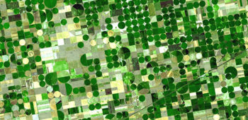 Aerial photo of green fields