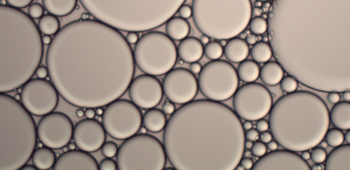An image showing emulsification