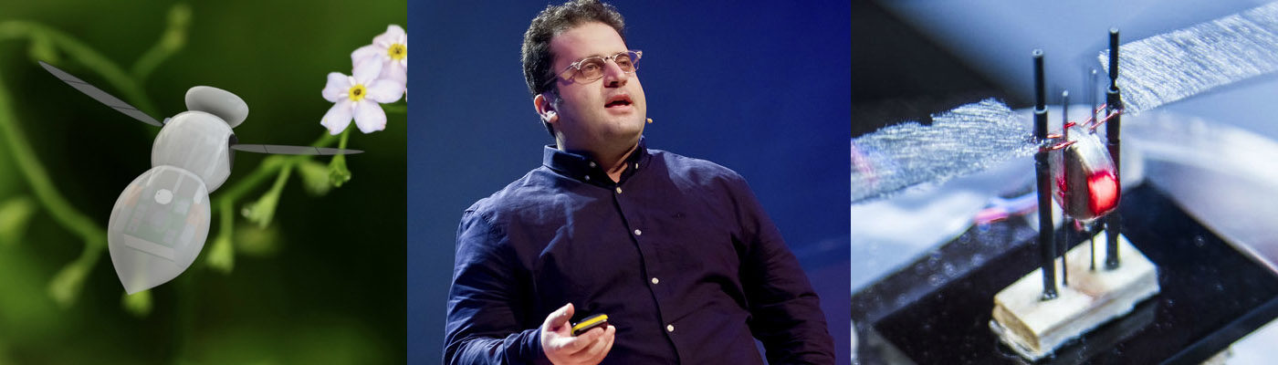 Mostafa Nabawy - Microsystems research group lead and a micro-robot insect