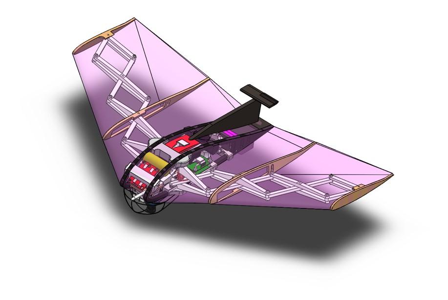MCP's delta-wing glider