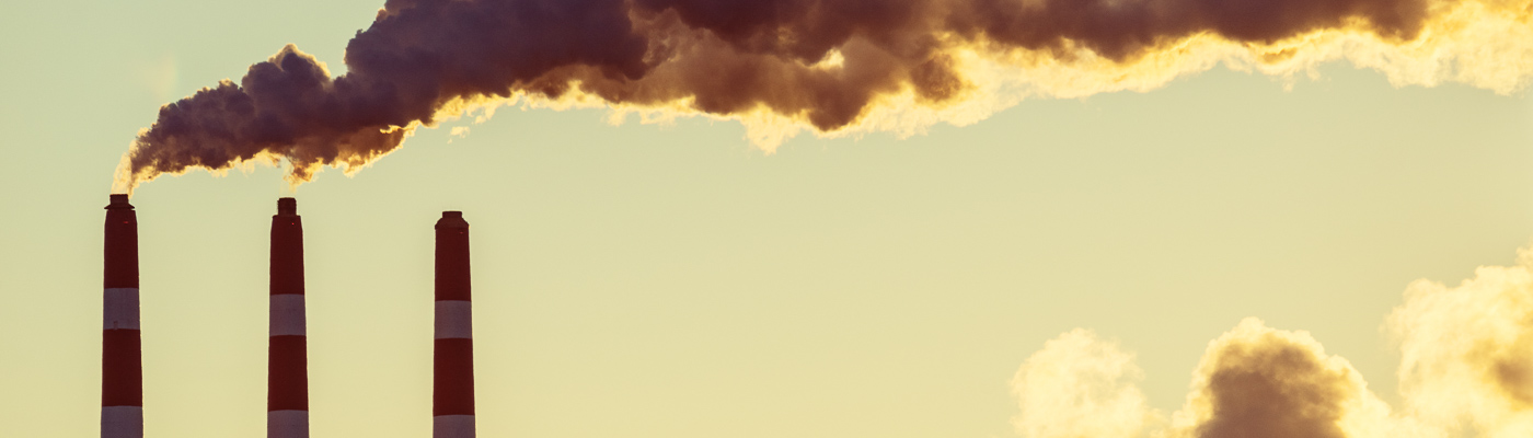 Smoke and steam billows from power plant smoke stacks in early morning light.