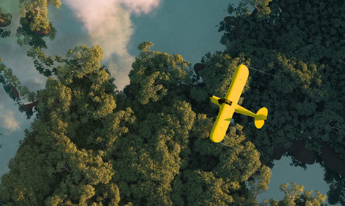 Yellow plane above a green forest