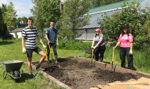 Volunteers planting at the firs